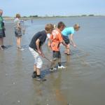 Onderzoek in het water